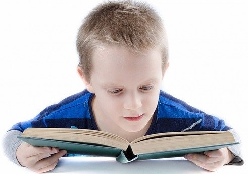 Little boy holding a book in both hands, attempting to read